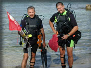 reasearch divers